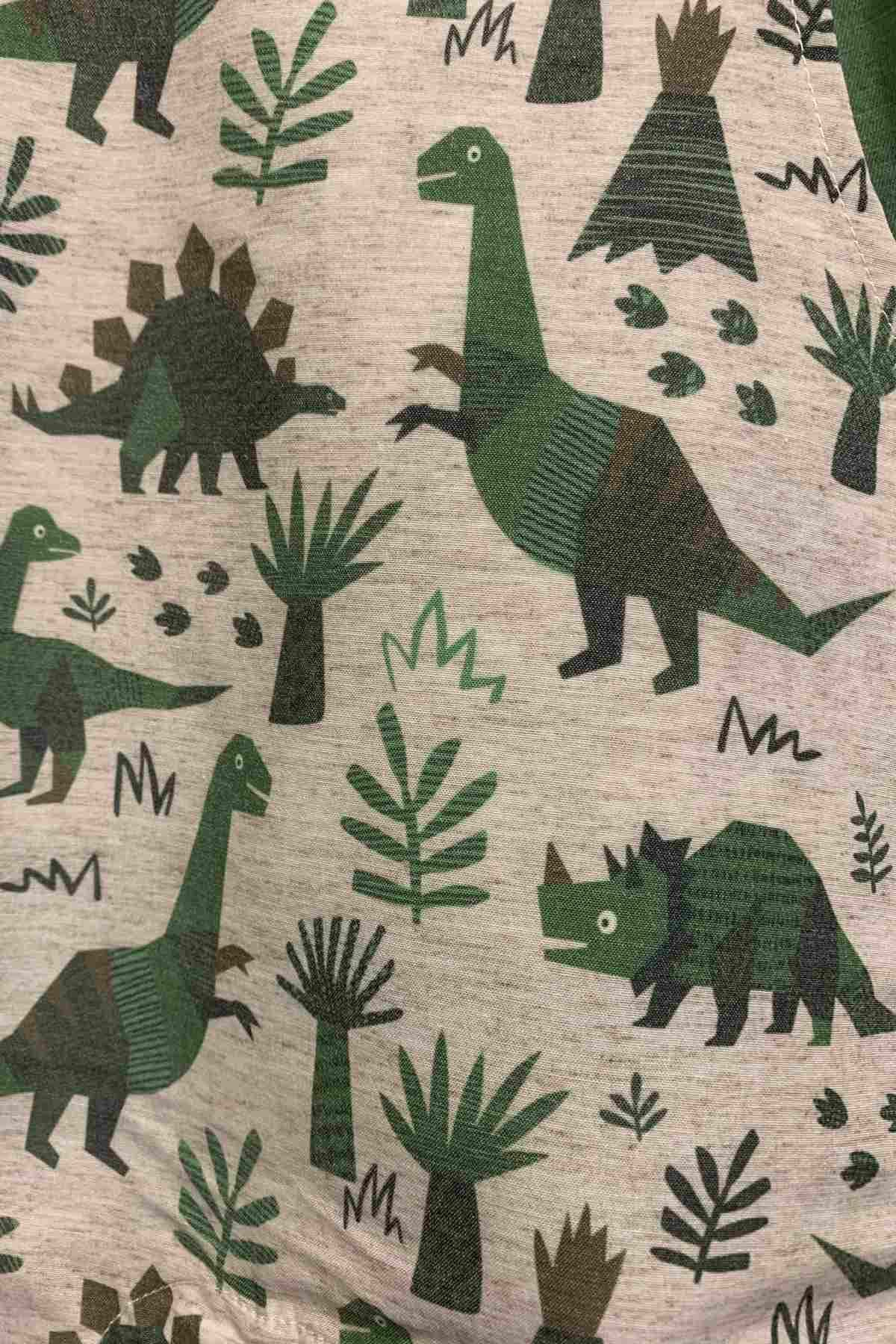 Dinazor Figürlü Yeşil Salopet Takım